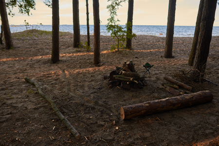 relaxant: Calm and tranquil morning scene outdoors in forest with river or sea in background. Firewoods among trees waiting for someone to set camp fire. Wilderness, nature, camping and adventure concept