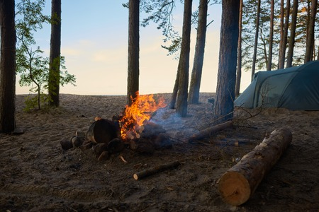 Tourism, adventure, traveling, camping, active lifestyle, trekking and hiking concept. Picture of campsite with fireplace with blazing fire and tent among trees in background, no people around Фото со стока