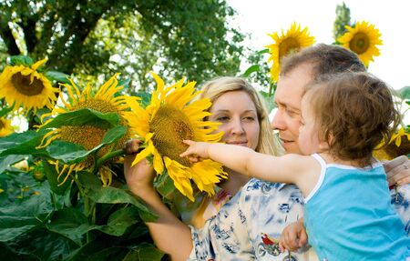 Family (mother, father, daughter) in sunflower field Stock Photo - 3391029