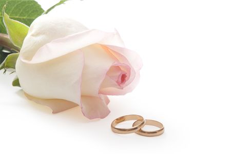 Wedding rings and rose on  white background, isolated, with clipping path