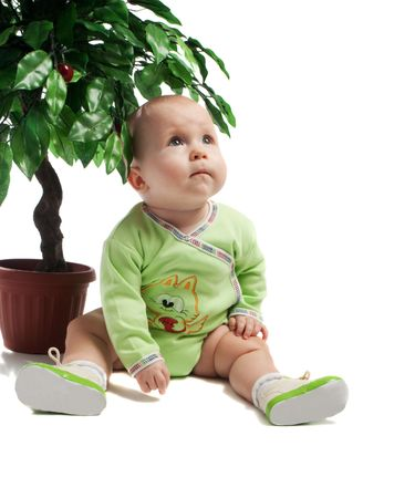 Baby sitting under green tree, isolated photo