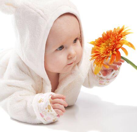 Baby in white examining orange daisy, isolated photo