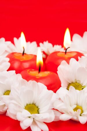 Chamomiles and burning red candles close up photo