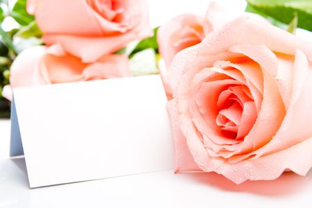 Pink rose and a blank card photo