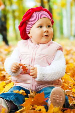 Baby girl sitting in autumn leaves photo