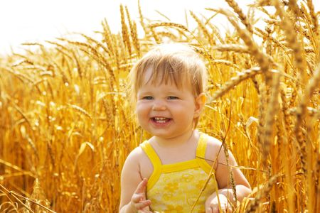 cropland: Laughing kid in sunny wheat  field