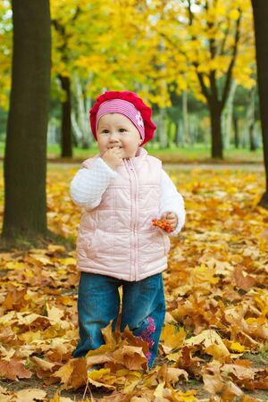 Charming toddler tasting ashberry in fall photo