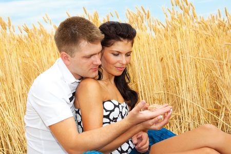 Attractive couple in the field looking at a wheat ear Stock Photo - 5116744