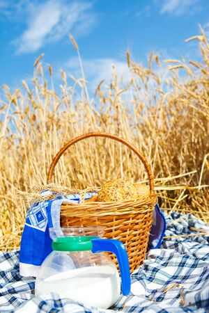Basket with bread and milk bowl in a wheat field photo