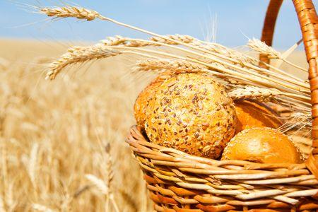 bread loaf: Cesto di vimini con pane e panini in un campo di grano Archivio Fotografico