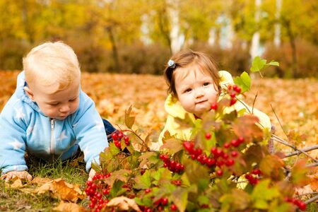 Lovely baby friends crawling in the autumn park  photo