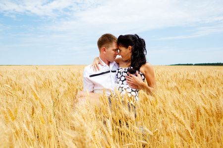 Young romantic couple in a wheat field photo