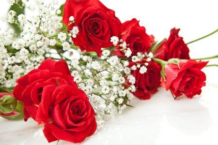 Bouquet de rosas rojas sobre un fondo blanco