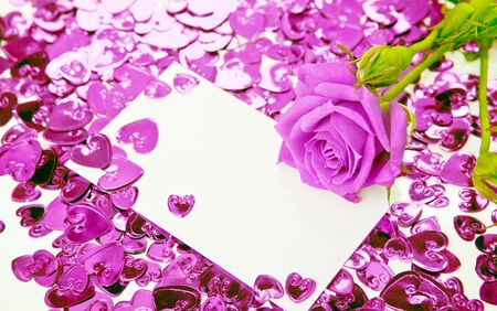 rosa: Purple rose and a blank invitation card