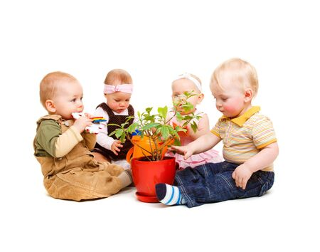 A group of beautiful babies sitting around a pot plant photo