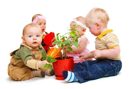 A group of beautiful babies sitting around a potted plant photo