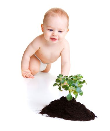 Baby looks at plant photo