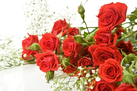 red roses: Red roses bouquet on a white background Stock Photo
