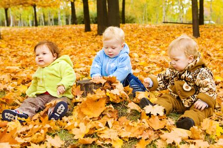 Three baby friends sitting on the yellow autumnal leaves photo
