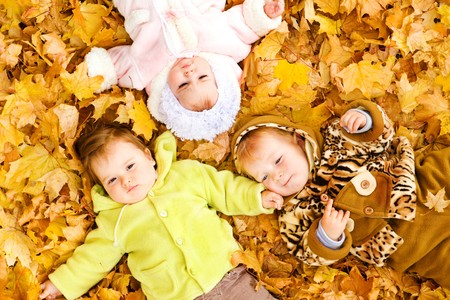 fall fun: Three baby friends lying on the  autumn leaves