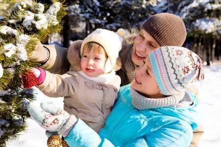 decorating christmas tree: Parents and daughter decorating Christmas tree in a winter park Stock Photo