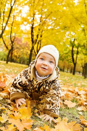 Baby crawling over yellow leaves photo