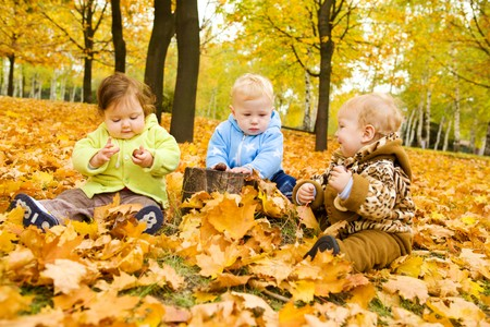 Babies playing with chestnuts in the autumn park photo