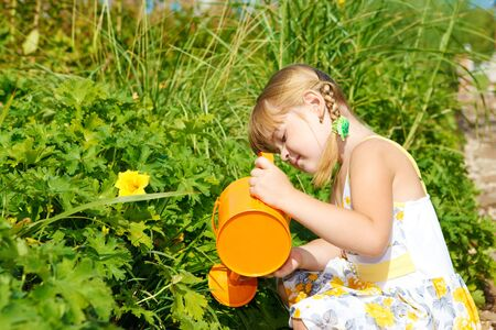 Sweet preschool girl watering plants in vegetable garden photo