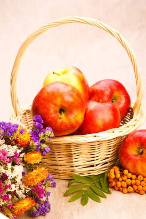 Apples in basket, berries and wildflowers photo