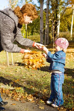 composing: Mother and daughter composing bouquet from autumn leaves Stock Photo
