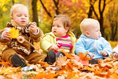 Autumn leaves and babies on them photo