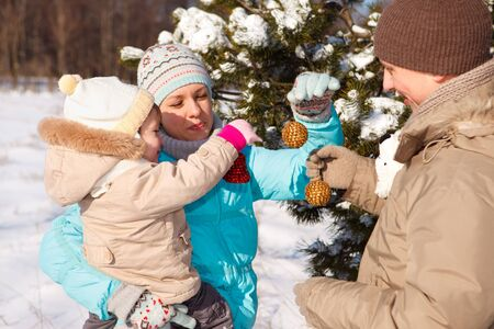Family with Christmas decoration Stock Photo - 7955186