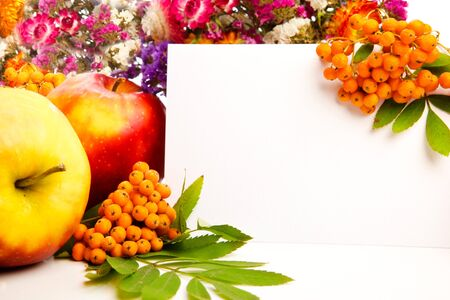 Autumn flowers, berries and blank invitation card photo