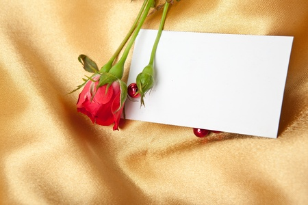 Red rose and blank invitation card on golden satin photo
