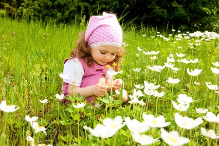 Sweet toddler girl examining white flowers photo
