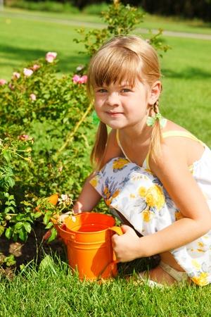 Preschool girl watering roses photo