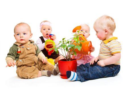 Grupo de bebés sentados alrededor de la planta en maceta