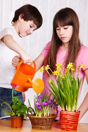 Two cute kids watering flowers photo
