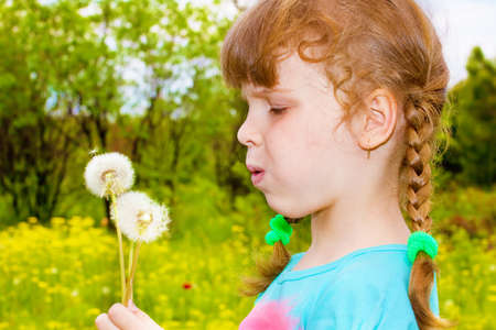 Portrait of a preschool girl holding dandelion photo