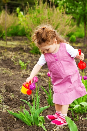 tulips in green grass: Cute curly girl watering flowers in the garden Stock Photo