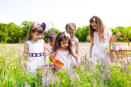 Preschool and school age girls in white dresses on the meadow