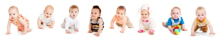baby crawling: Group of eight babies, crawling, over white Stock Photo
