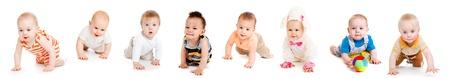 baby crawling: Grupo de los ocho beb�s, rastreo, sobre blanco