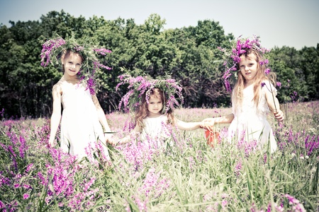 Joyful kids in the meadow  photo