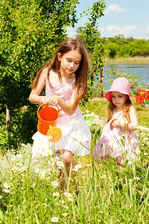 Two sisters in the garden watering camomiles photo
