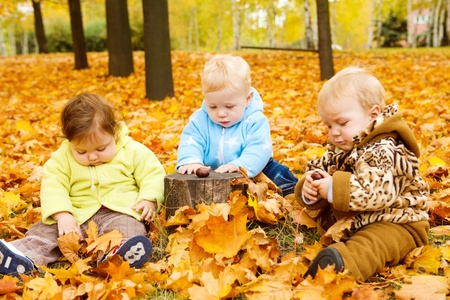 Three babies sitting on yellow leaves Stock Photo - 10369647