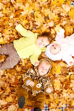 Three baby friends lying on the  autumn leaves photo