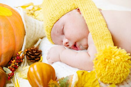 Newborn kid sleeping among pumpkins Stock Photo - 10428010