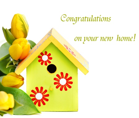 bird house: Bright wooden nestbox and yellow tulips, over white Stock Photo