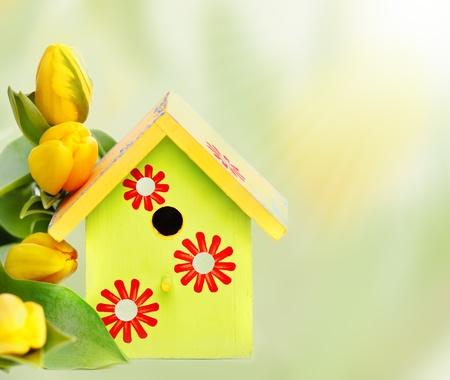 Bright wooden nestbox and yellow tulips, over white Foto de archivo